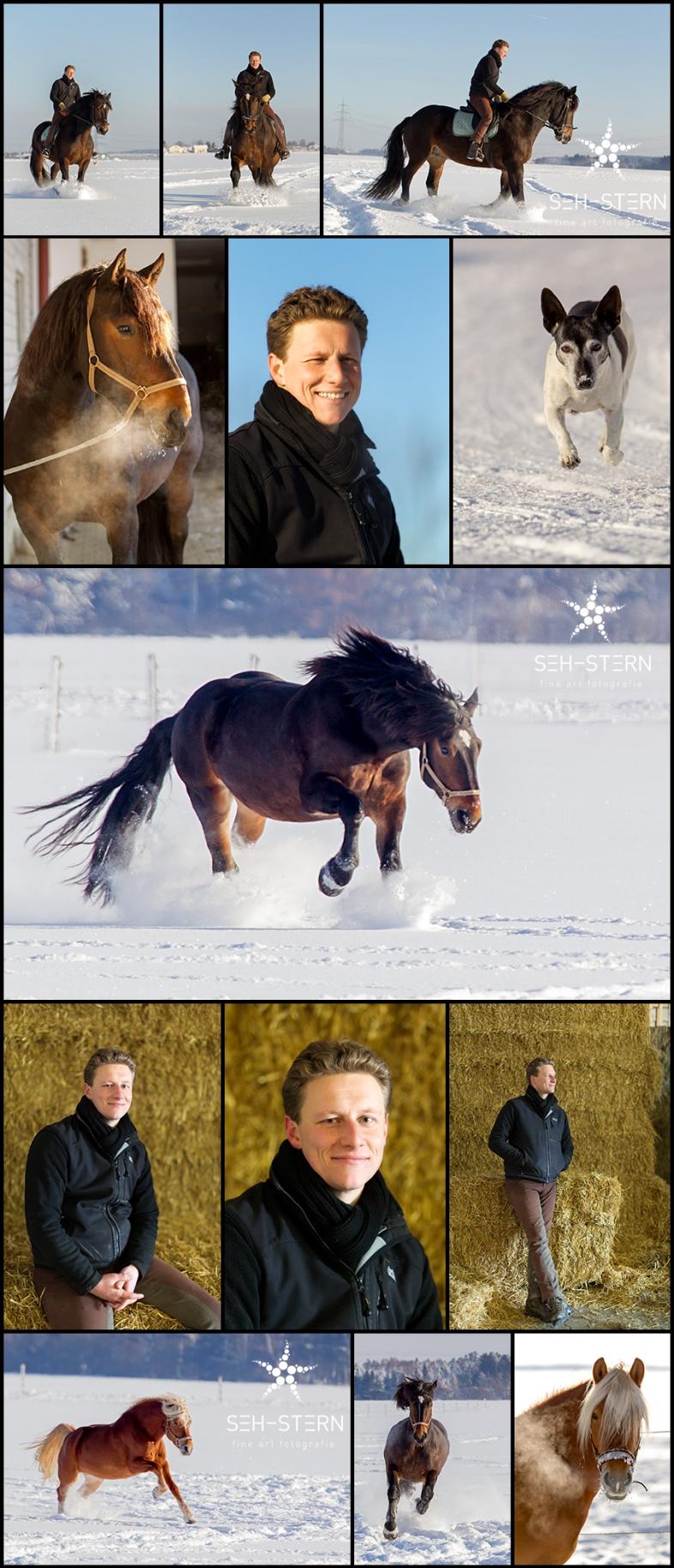 Pferdefotos vom Pferdefotograf in München
