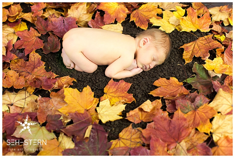 Newborn photographer Munich