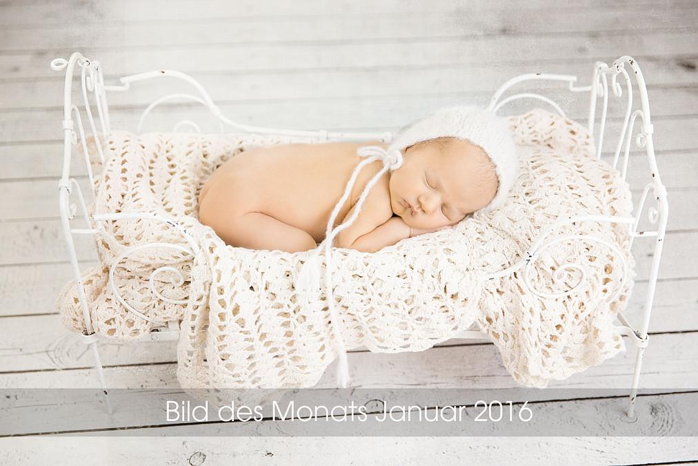 Zauberhafte Neugeborenenbilder im Tageslichtstudio