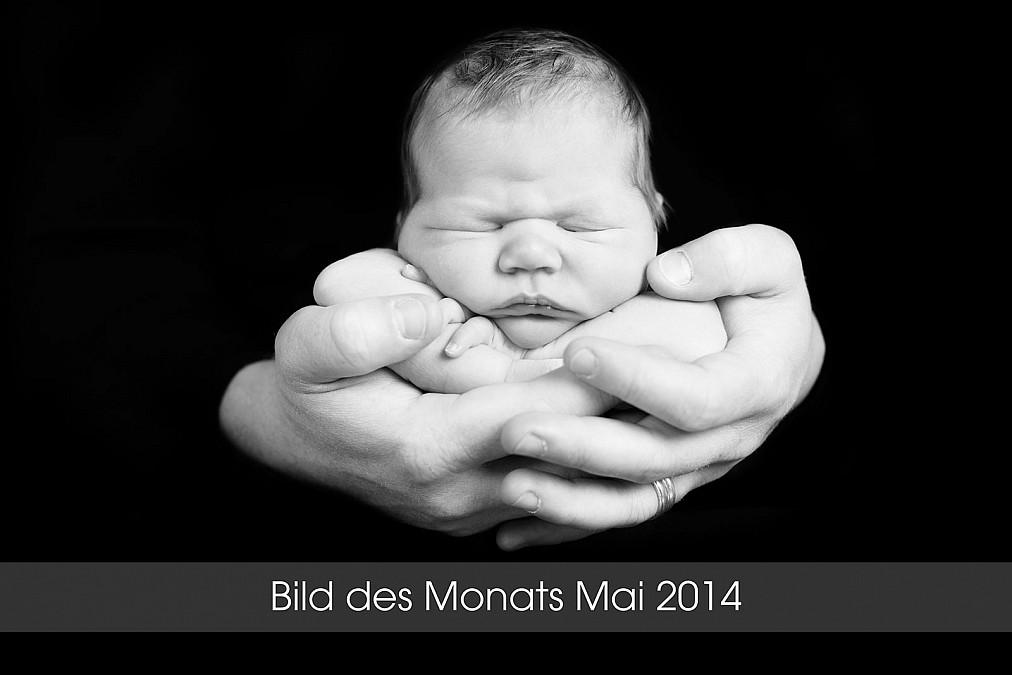 Babyfotograf in München Laim